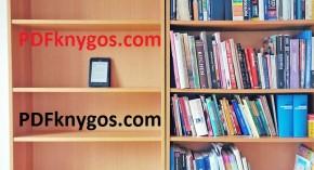 Knygos elektroniniu formatu